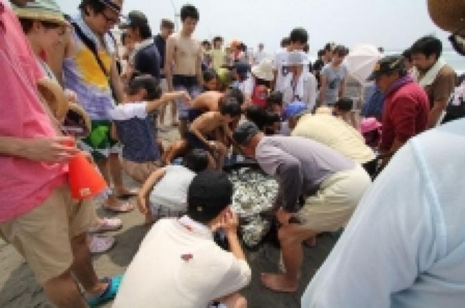 「海でやらまいか」開催