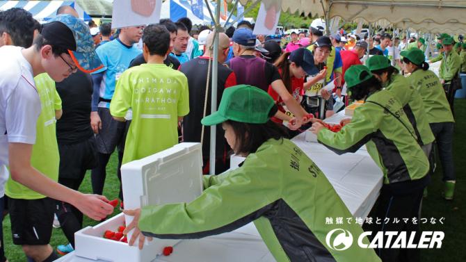 第13回 掛川・新茶マラソン開催