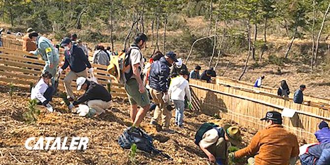 平成30年度 磐田市海岸防災林植樹祭に参加しました